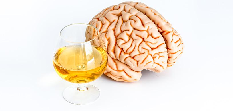 картинки алкоголя на мозг пакеты купить