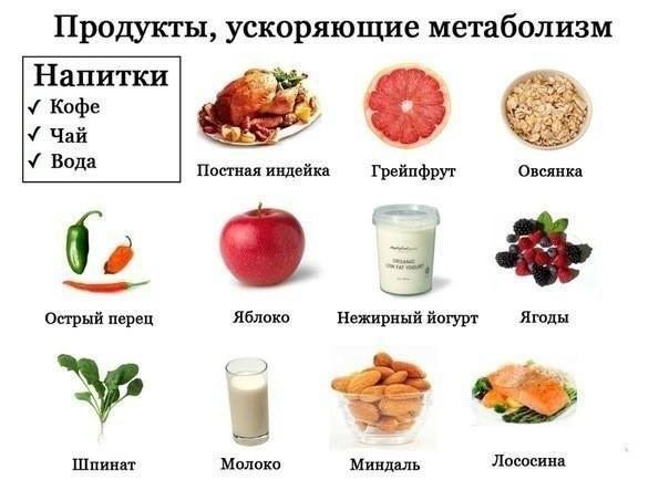 Продукты для улучшения обмена веществ похудение