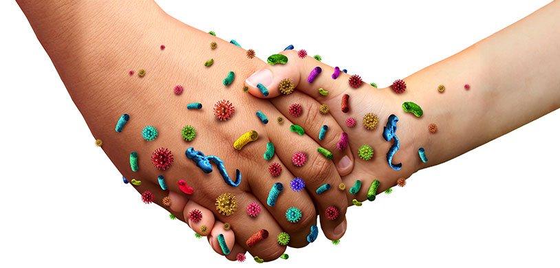 Ученые выяснили, как бактерии общаются между собой